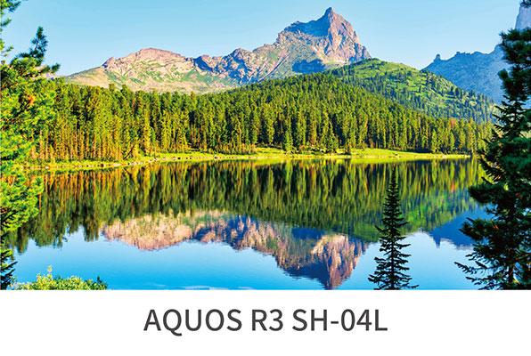 AQUOS R3 ディスプレイ スペック